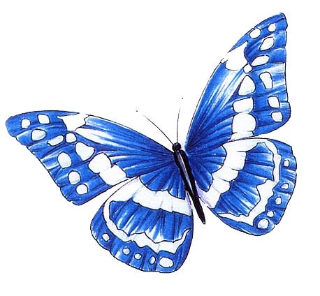Vlinders  Faketattoonl