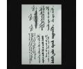 XL Tattoos teksten zwart/wit tattoo voorbeeld Teksten 067