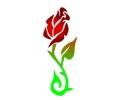 Bloemen tattoo voorbeeld Roos 3-85