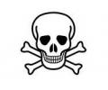 Skulls Zwartwit tattoo voorbeeld Skelet hoofd