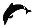Dieren tattoo voorbeeld Dolfijn