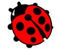 Peace tattoo voorbeeld Lieveheersbeestje 2