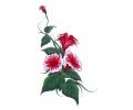 Bloemen tattoo voorbeeld Bloemen zonder Vogel