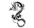 Draken tattoo voorbeeld Draak 29