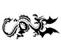 Draken tattoo voorbeeld draak