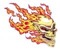 Skulls Kleur tattoo voorbeeld Skull met Vlammen