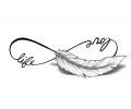 tattoo voorbeeld Love Life, Veertje, met Schaduw