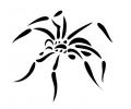 Roofdieren tattoo voorbeeld Spin