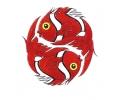 Koi Karpers tattoo voorbeeld Rode Vissen