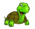 Overige dieren tattoo voorbeeld Vrolijke Schildpad