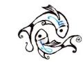 Overige dieren tattoo voorbeeld Visjes