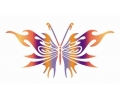 Vlinders tattoo voorbeeld Vlinder 4