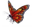 Vlinders tattoo voorbeeld Vlinder Oranje