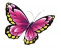Vlinders tattoo voorbeeld Vlinder Roze 1