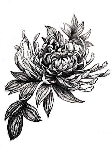 Bloemen grijs 1