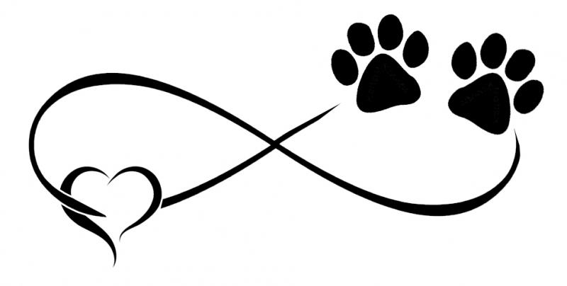 Pols Tattoo Infinity Faketattoonl
