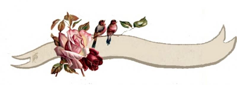 Roze roosje