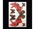XL Tattoos Dieren kleur tattoo voorbeeld Dieren 081 Vlinders Rood