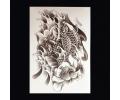 XL Tattoos Zwartwit tattoo voorbeeld Dieren 098 Twee Koi Karpers grijstinten
