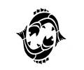 Sterrenbeelden tattoo voorbeeld Vissen