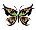 Vlinders tattoo voorbeeld Vlinder 20-49