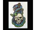 XL Tattoos Kleur tattoo voorbeeld Boosaardig 204