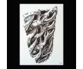 XL Tattoos Schouder tattoo zwart/wit tattoo voorbeeld Schouder Tattoo 250 Gevlochten beenderen