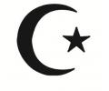 Politiek tattoo voorbeeld Maan en ster / Turkije