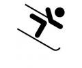 Wintersport tattoo voorbeeld Skiën