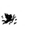 Liefde / Valentijn tattoo voorbeeld Cupido 6