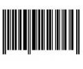 Overige Symbolen tattoo voorbeeld Streepjescode groot