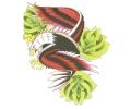 Overige Vogels tattoo voorbeeld Arend met Groene Rozen