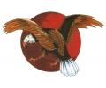 Overige Vogels tattoo voorbeeld Arend met Zon