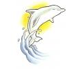 Dolfijnen tattoo voorbeeld Dolfijn 5
