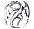 Draken tattoo voorbeeld Draak Grijs