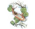 Vissen & Koi Karpers tattoo voorbeeld Koi in de Vijver