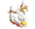 Adelaars tattoo voorbeeld Onderhuidse Adelaar