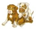 Honden tattoo voorbeeld Pit Bull Puppy's