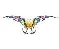 Onderrug Tattoos tattoo voorbeeld Rugtattoo Vlinder