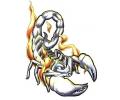 Overige dieren tattoo voorbeeld Schorpioen 2