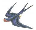 Nieuw!!! Plaktattoos tattoo voorbeeld Shooting Sparrow