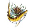 Haaien tattoo voorbeeld Tijgerhaai