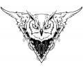 Overige dieren tattoo voorbeeld Uil