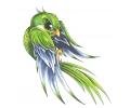 Nieuw!!! Plaktattoos tattoo voorbeeld Vastberaden Vogeltje