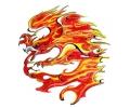 Vlammen & Vuur tattoo voorbeeld Vlammende Vogel