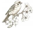 Overige Vogels tattoo voorbeeld Vogel op Tak