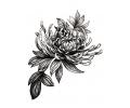 Nieuw!!! Plaktattoos tattoo voorbeeld Bloemen grijs 1