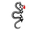 Draken tattoo voorbeeld Draak 100