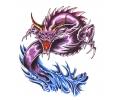 Draken tattoo voorbeeld Draak 13