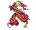 Draken tattoo voorbeeld Draak 9